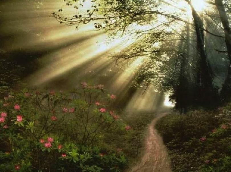 luce11 Quarta dimensione: la vallata del discernimento.